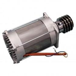 CAME Электродвигатель BX-241 в сборе 119RIBX020